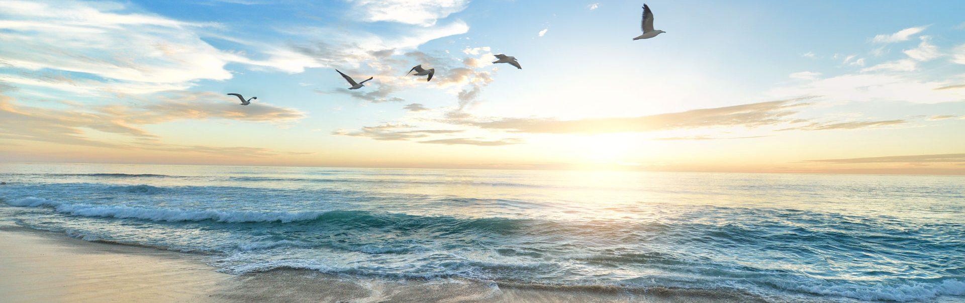 海遊び 波遊び